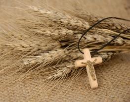 Christian cross on wheat ears - religious concept