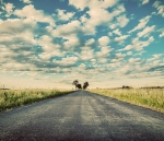 Empty straight long asphalt road. Dramatic cloudy sky. Concepts