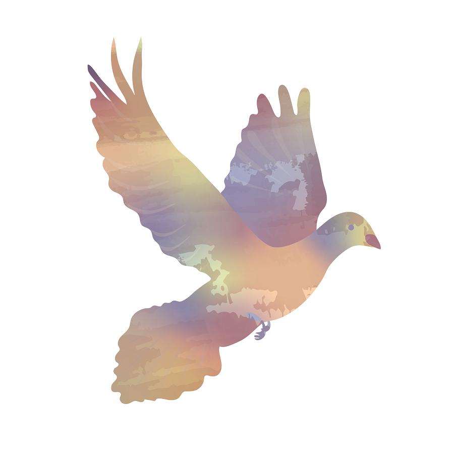 Thy Kingdom Come –Pentecost